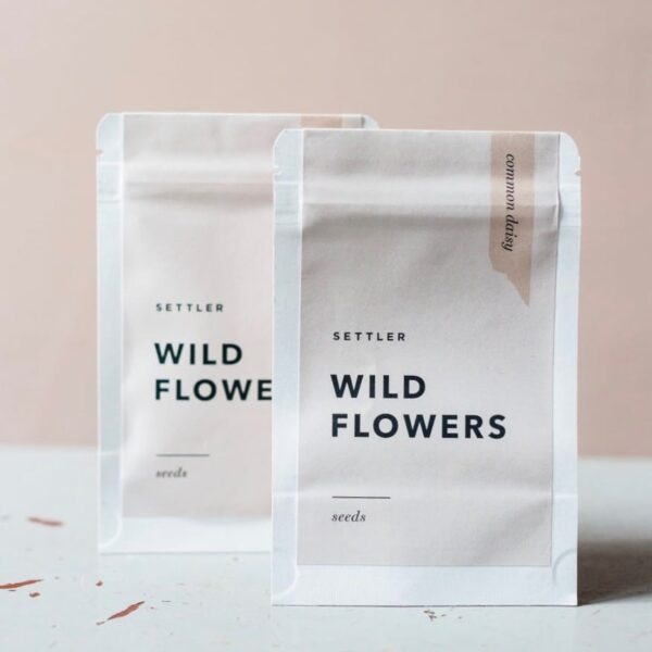 Settler Hives, Wild Flowers Seeds, Common Daisy The Wholesome Gift Box