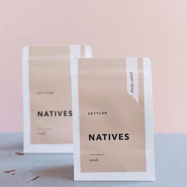 Settler Hives, Natives Seeds, Paper Daisy The Wholesome Gift Box